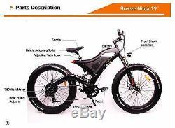 Breeze Ninja Fat Tire Electric Mountain Bike 750W, 48V, 10.4ah battery, Free Ship