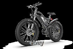 GLW Electric Mountain Bike 750W 48V Samsung Battery Fat Tire Full Suspension S18